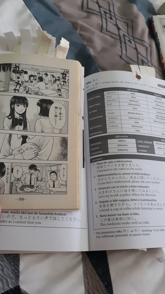 Aku no Hana Vol 1 and 600 Basic Japanese Verbs
