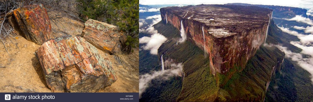 Petrified wood from Escalante Petrified Forest State Park in Utah, vs 'Mt.' Roraima - photos not my own