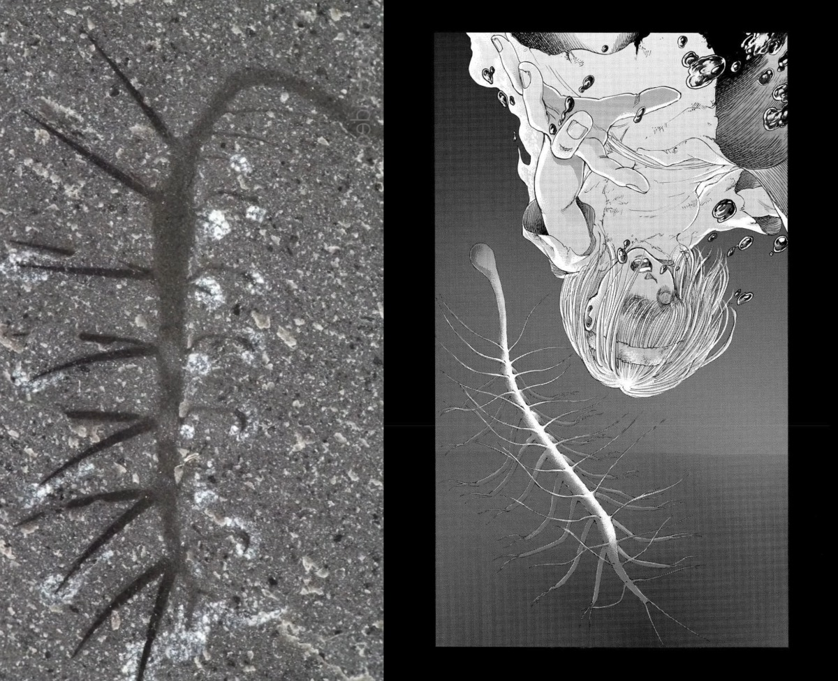 Hallucigenia – the Primordial Spinal Creature from Attack on Titan – AnimeAnthology