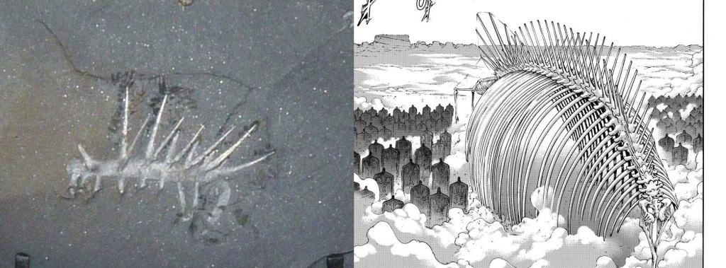 A Hallucigenia fossil side by side with Eren's founding titan fully transformed from Shingeki no Kyojin manga chapter 133